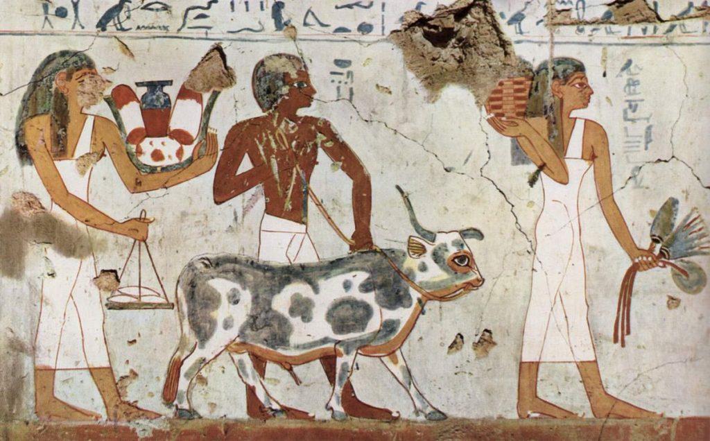 lentejas-egipto