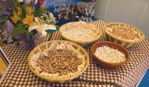 variedades-alubia-bañeza