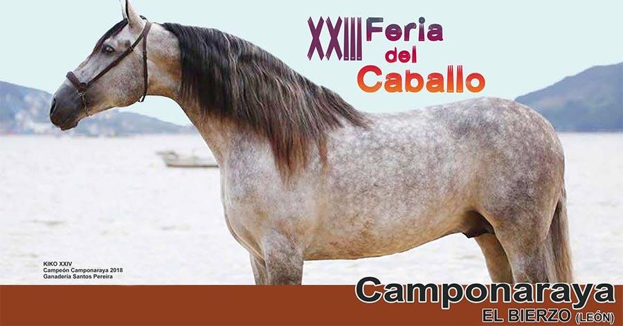 feria-caballo-raza-española