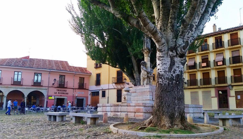 plaza-grano