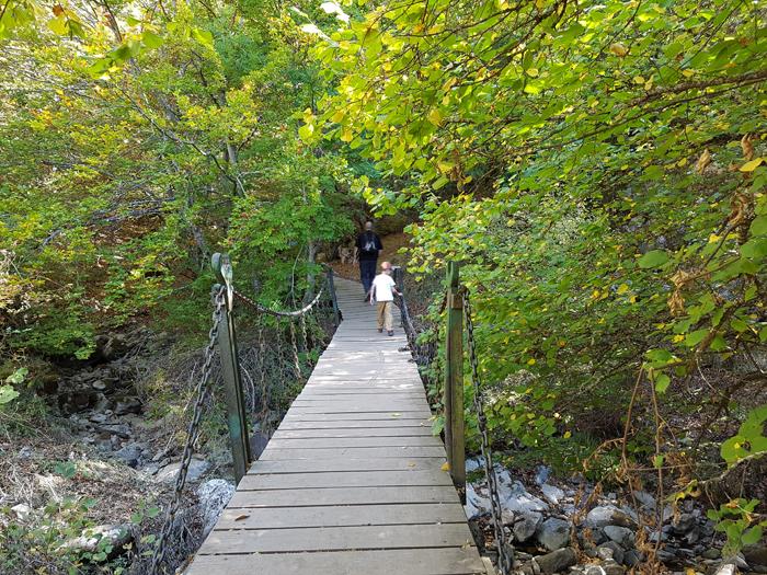 puente-acceso-faedo