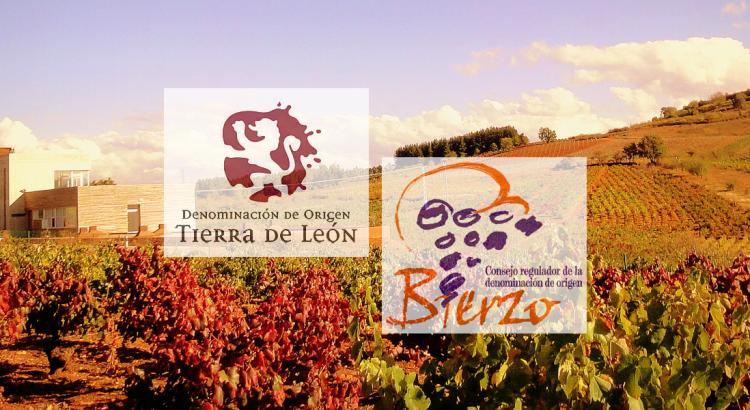 vinos-donominacion-origen-leon